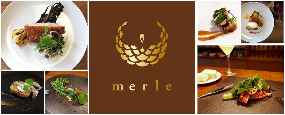 merle_top